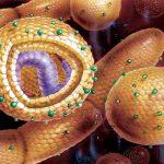 Распространенность хронического гепатита В и диабетический статус пациентов взрослого возраста: новые данные