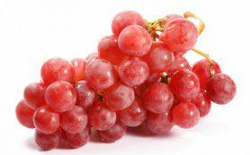 Красный виноград и черника усиливают деятельность иммунной системы
