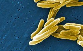 Туберкулез можно лечить быстрее