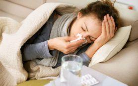 В Омске закончилась эпидемия гриппа, лидировал в этом сезоне гонконгский