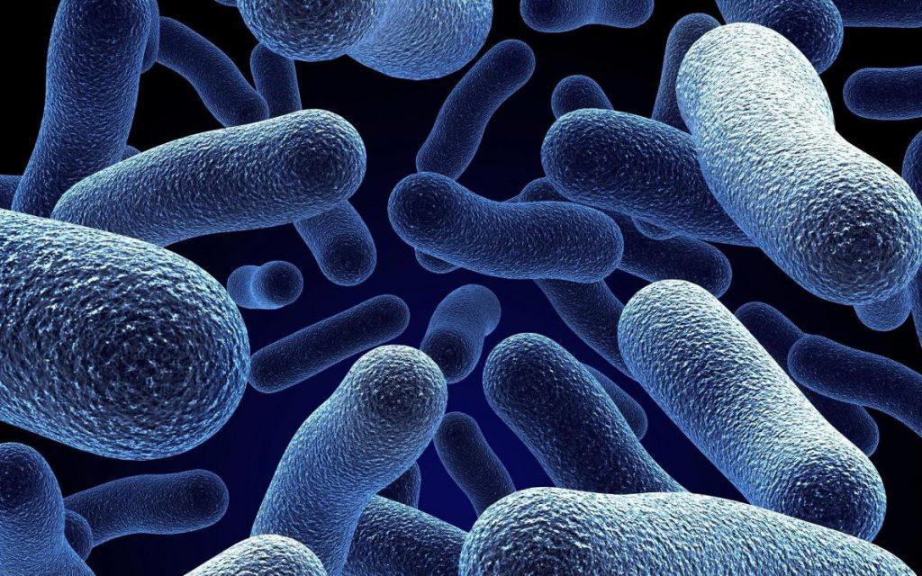 Чем опасен сифилис у мужчин, основные его симптомы и как его лечить