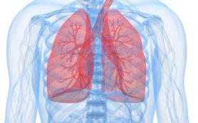 Генетики доказали, что ХОБЛ — одно из самых сложных заболеваний