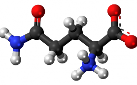 Полезные свойства аминокислот