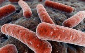 В России создали уникальное лекарство от туберкулеза