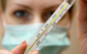 В Мордовии грипп отступил