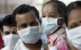 В Индии с начала года от свиного гриппа умер 101 человек