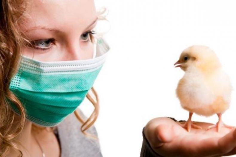 В Татарстане добытую на охоте пернатую дичь проверят на птичий грипп