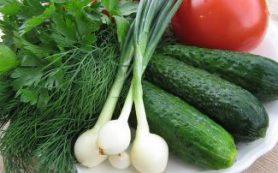 Благодаря ранним овощам у нас повышается иммунитет — диетолог