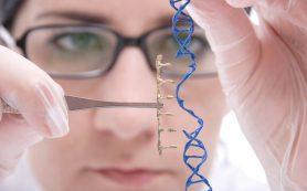 Ученые впервые полностью устранили ВИЧ у живых животных, используя редактирование генов по принципу «вырезать и вставить»