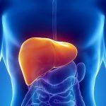 Статьи о лечении гепатита, эффективные препараты и другие полезные услуги на интернет–портале India Expres