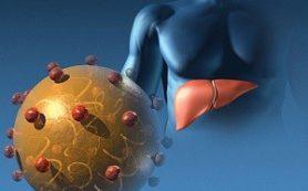 Внешняя среда и гепатит Е