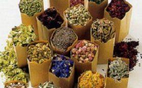 Травы и сборы для очищения легких: 10 рецептов