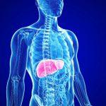 Эффективное лечение гепатита в Израиле