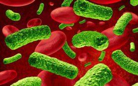 Псковские врачи прогнозируют подъем заболеваний, вызванных энтеровирусной инфекцией