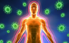 Вспышку свиного и гонконгского гриппа ожидают в Удмуртии