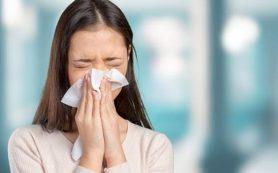 Загрязнения воздуха вызывают хронический стресс и метеоризм