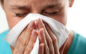 Аллергия чаще развивается во взрослом возрасте