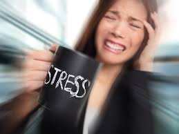 Ученые изучают влияние стресса на организм