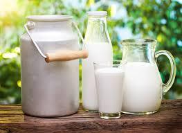 В сухом молоке из Чувашии нашли антибиотики