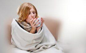 Избавляемся от стереотипов: горячие напитки во время простуды только усугубляют ситуацию