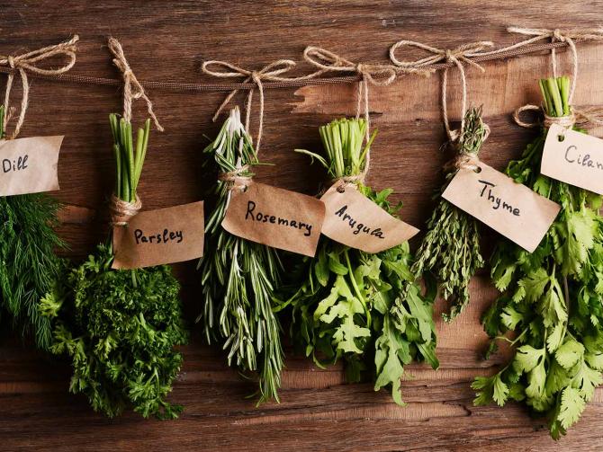 Что содержат травы, которые мы едим