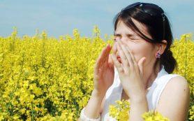 Начинается сезон аллергии на цветение всякого рода растений