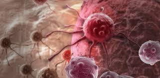 Как иммунитет помогает метастазам