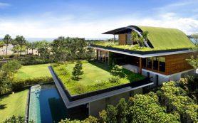 Экологически чистые материалы для дома