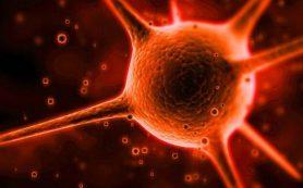 Неизлечимую опухоль мозга уничтожили вирусом