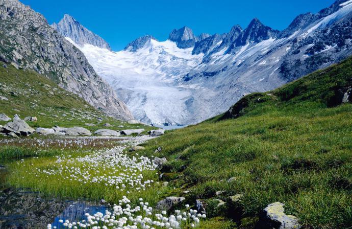 Самая экологически чистая страна в мире