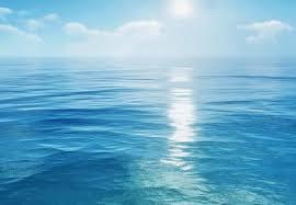Какие инфекции не передаются через морскую воду?