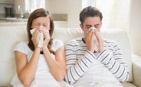 Открыта новая инфекция: погибнет миллиард человек