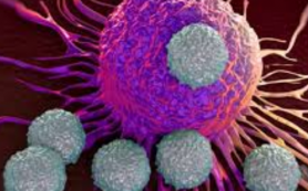 Ученые научились наблюдать за поведением раковых клеток в реальном времени