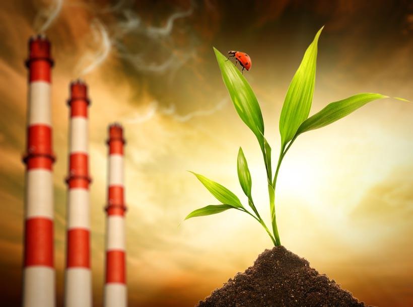 Экология и работа предприятий: что об этом нужно знать?