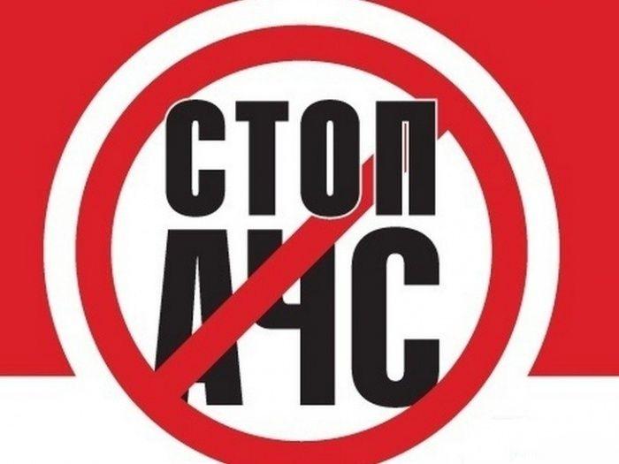 В Пермский край завезли мясо с вирусом африканской чумы свиней