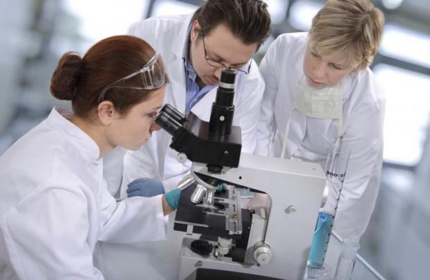Вирус как средство от рака: необычное исследование ученых из Новой Зеландии
