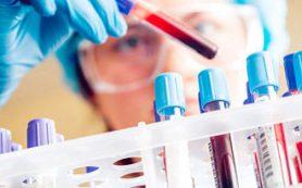 Так ли страшен вирус папилломы человека?