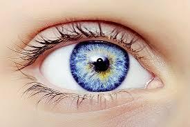Ученые обнаружили, что прионная инфекция может распространяться через глаза