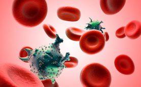 За год во Владимирской области нашли 504 ВИЧ-инфекцированных