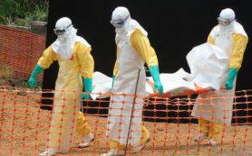 200 человек скончались в Конго от лихорадки Эбола