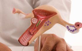 Опасна ли эктопия шейки матки?