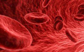 Генная терапия справится с гемофилией