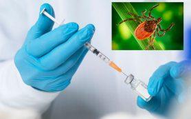 Эксперты в области здравоохранения призывают к вакцинации против TBE