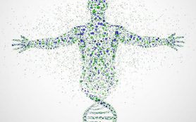 Диктатура микробиома: Настроение, ВЕС и работа иммунной системы