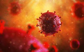 Лето без гепатита А: профилактика желтухи