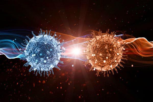 Отличия вирусной инфекции от бактериальной