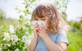 Новые методы лечения аллергии: каков прогресс ученых