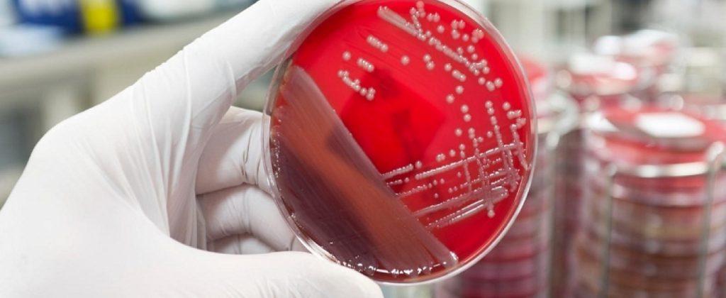 Какие заболевания грозят вам по группе крови?