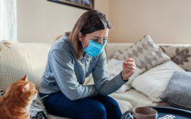 Как жить с больным коронавирусом в одной квартире и не заразиться