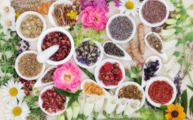 Витамины и травы для иммунитета